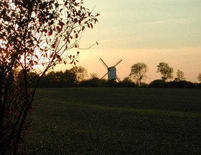 Mountnessing Windmill at sunset